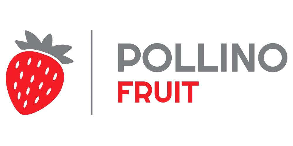 pollino logo copy